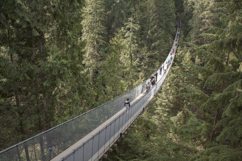 Capilano Ponte Suspensa